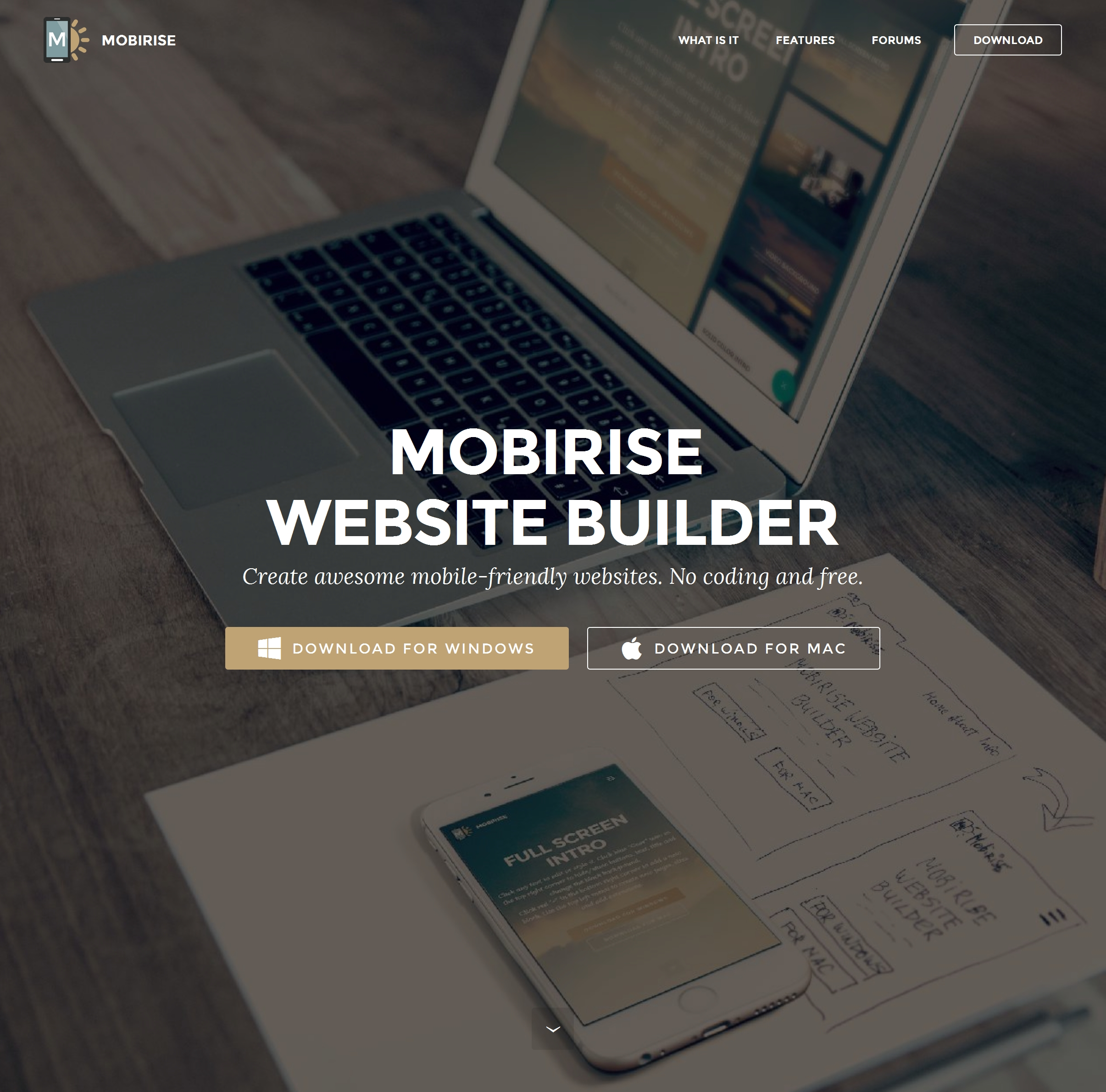 Best  Site Builder Software