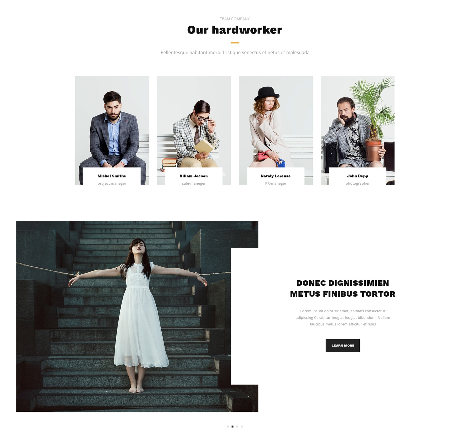 Responsive Bootstrap Single Page Theme