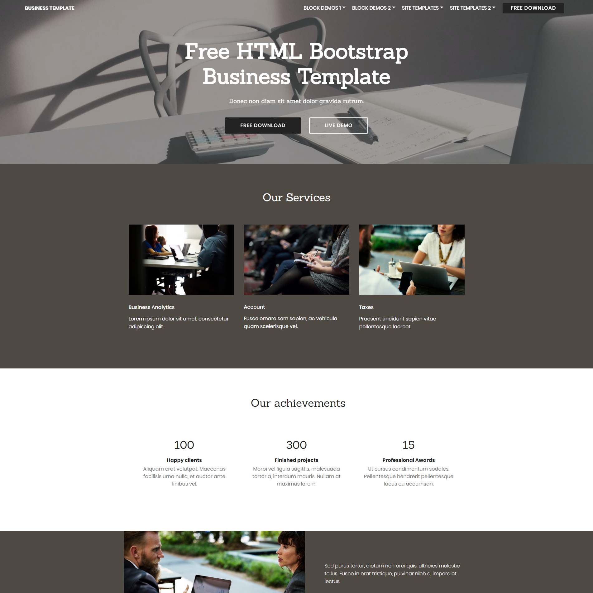 CSS3 Bootstrap Busines Themes